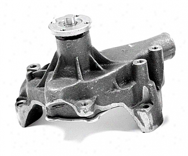Gmb 1301270 Pontiac Water Pumps
