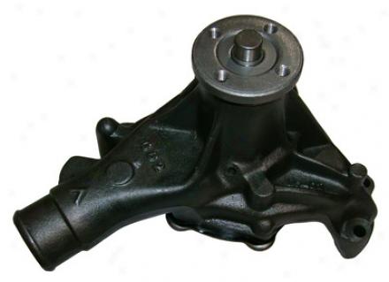 Gmb 1301620 Pontiac Water Pumps