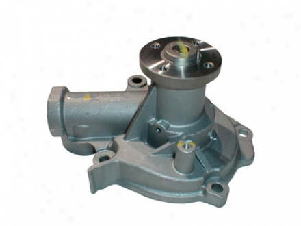 Gmb 1461110 Hyundai Water Pumps