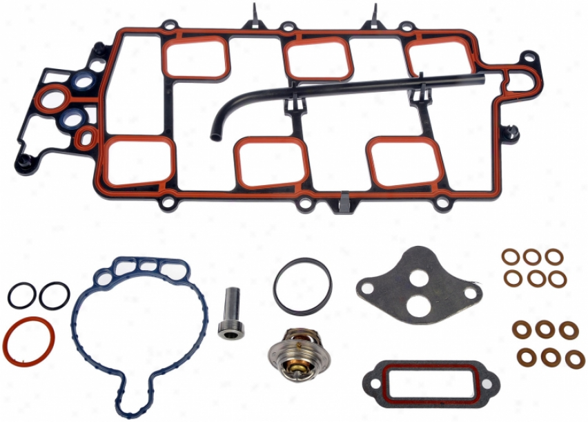 Dorman Oe Solutions 615-207 615207 Ford Manifold Gaskets Set