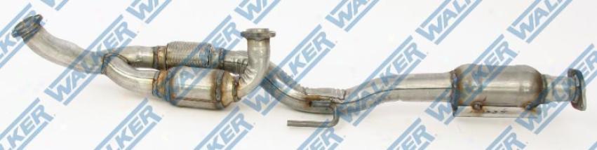 Walkr 50442 Fuel Filters Walker 50442