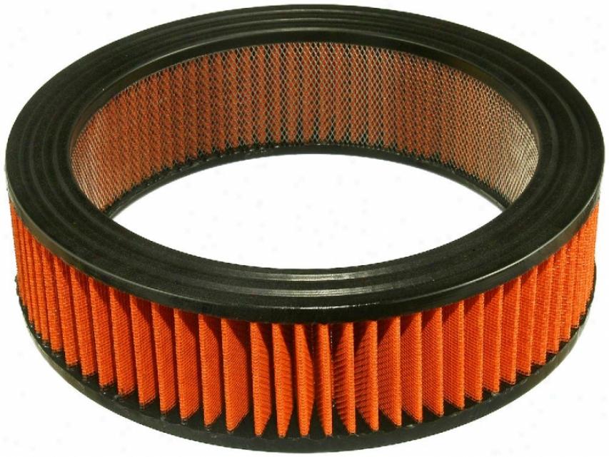 Fram Air Hog Filters Pra160 Amc Parts