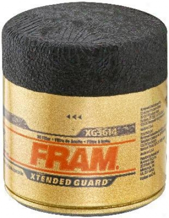 Fram Extended Guard Filters Xg3614 Gm Parts