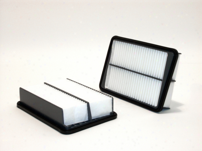 Wix 42156 Mg Air Filters