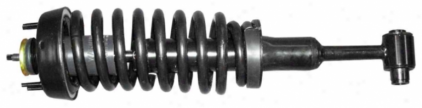 Monroe Shocks Struts 171398 171398 Nissan/datsun Parts