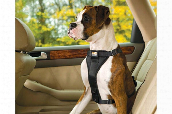 Kurgo Tru-fit Smart Dog Harness 00025 Tru-fit Smart Dog Harness With Plastic Quick Relea