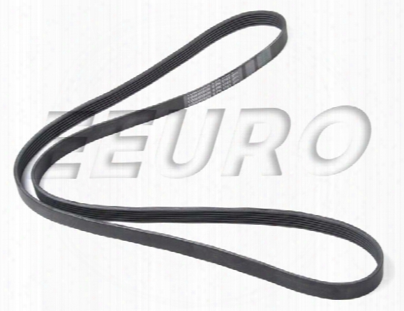 Accessory Drive Belt (6k 1743) - Continental 6k1743 Volvo 9186352