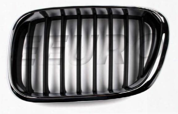Ez Ziegler/trucktec Kidney Grille - Front Driver Side (black) Bmw 51138402645