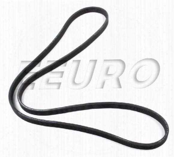 Accessory Drive Belt (6k 1825) - Continental 6dk1825 Volvo 30731811