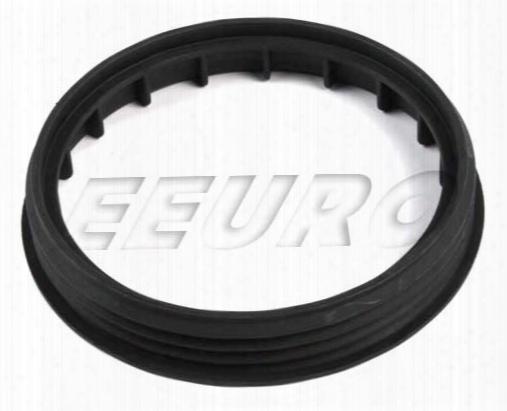 Fuel Pump Lock Ring - Proparts 23346550 Saab 32016296