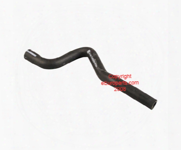 Expansion Tank Hose - Lower - Genuine Saab 4356838