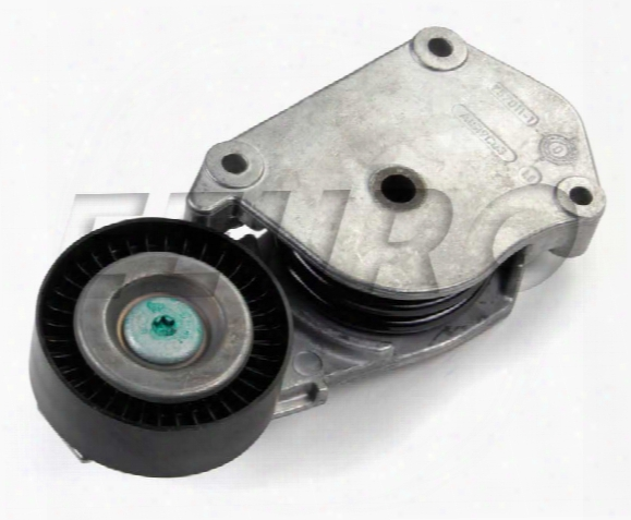 Serpentine Belt Tensioner - Ina 5340160100 Mini 11281482199