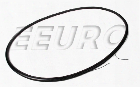 Sunroof Trim Strip (anthracite) - Genuine Bmw 54108036477
