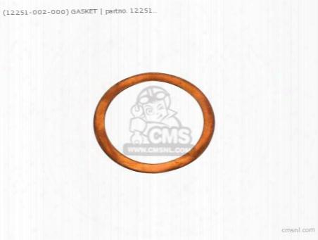 (1225100200)0 Gasket Head