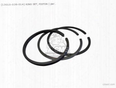 (1310036015) Ring Set, Piston (std.)
