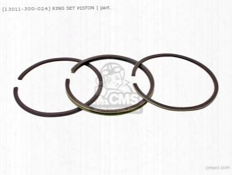 (13011300024) Ring Set Piston