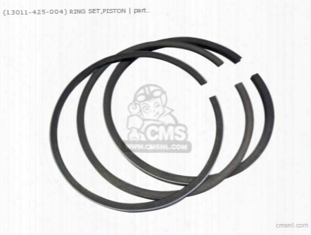 (13011425004) Ring Set,piston