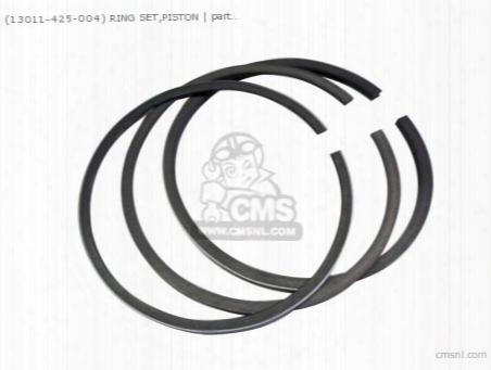 (13011425004) Ring Set,piston