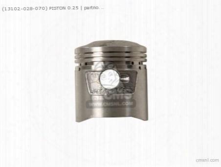(13102028050) Piston 0.25