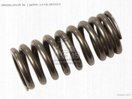 (14761383005) Spring,valve In.