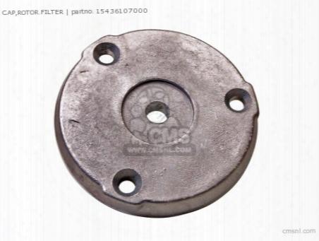 Cap,rotor.filter