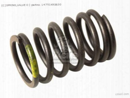 (c)spring,valve O