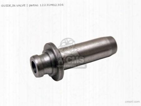 Guide,in.valve