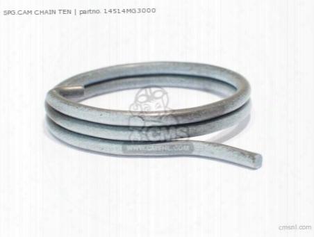 Spg.cam Chain Ten