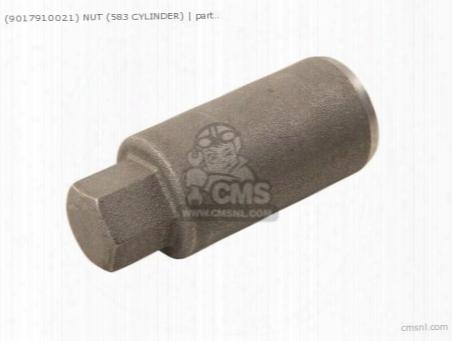 (9017910021) Nut (583 Cylinder)