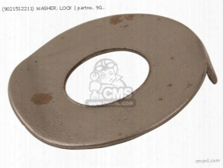 (9021512211) Washer, Lock