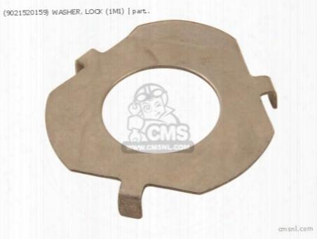 (9021520159) Washer, Lock (1m1)