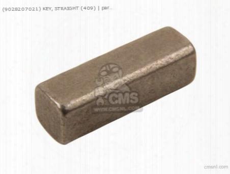 (9028207021) Key, Straight (409)