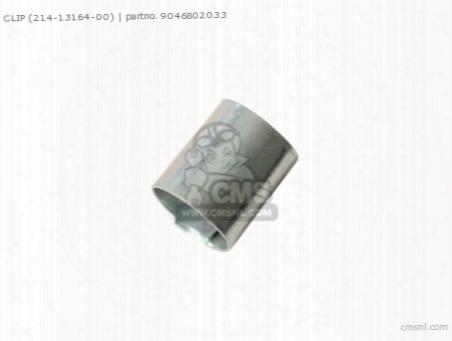 Clip (214-13164-00)