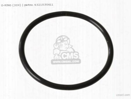 O-ring (30x)
