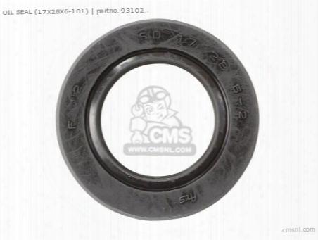 Oil Seal (17x28x6-101)