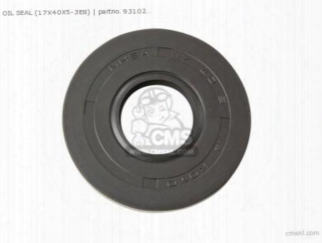 Oil Seal (17x40x5-3e8)
