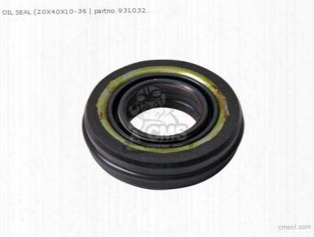 Oil Seal (20x40x10-360)