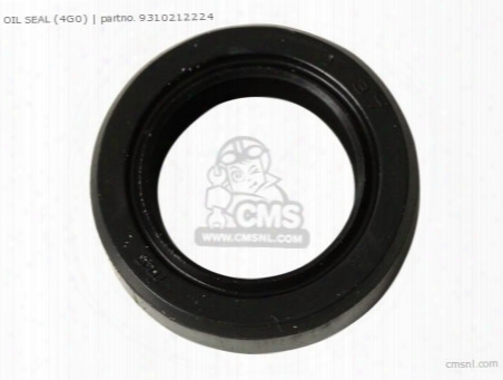 Oil Seal (4g0)