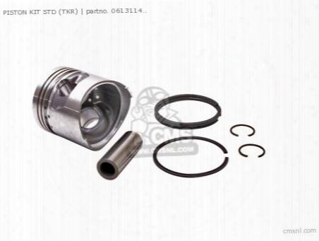 (06131-149-010p) Piston Kit Std (non O.e. Alternative)