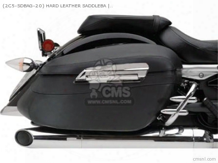 (2c5sdbag20) Hard Leather Saddlebags
