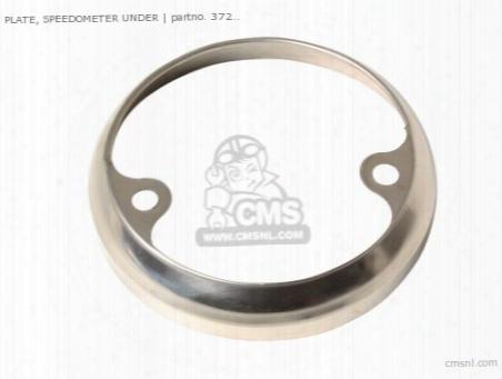 Plate, Speedometer Under