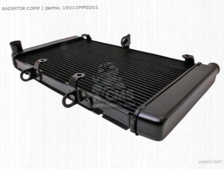 Radiator Comp
