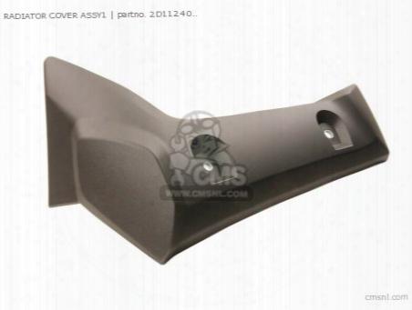 Radiator Cover Assy1