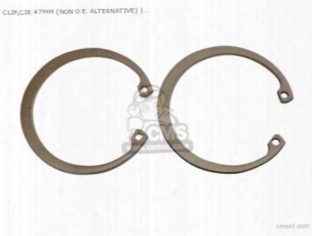 Clip,cir.47mm (non O.e. Alternative)