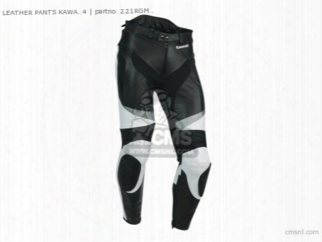Leather Pants Kawa..4