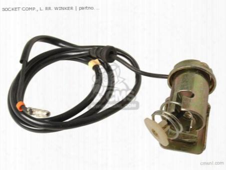 Socket Comp., L. Rr. Winker