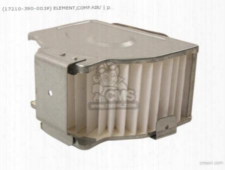 (17210-390-003p) Element,comp.air/