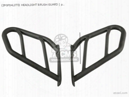 (2pgf84l0t0) Headlight Brush Guard