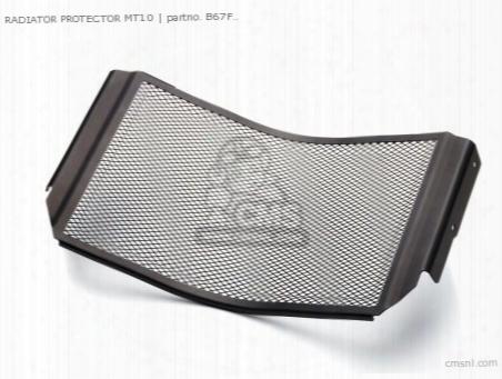 Radiator Protector Mt10