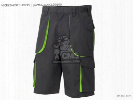 Workshop Shorts